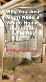 Why You Just Might Need a Whole House Humidifier, or More!