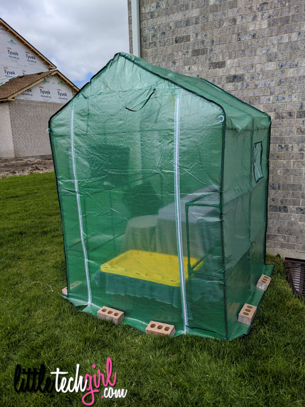 greenhouse closed with bricks