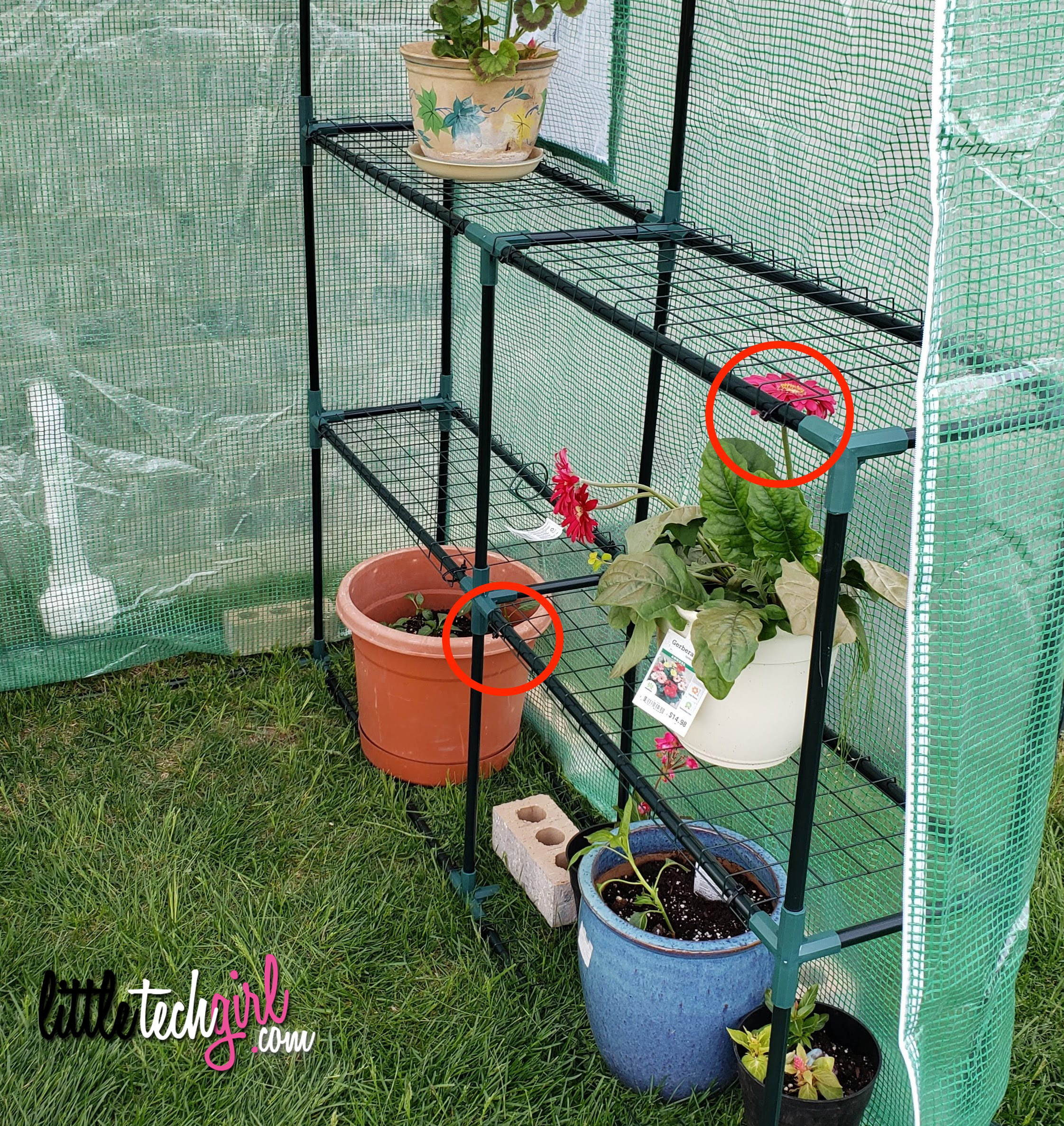 Greenhouse zip ties to keep shelves in place