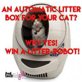 An Automatic Litter Box for Your Cat? Why Yes! Win a Litter-Robot!